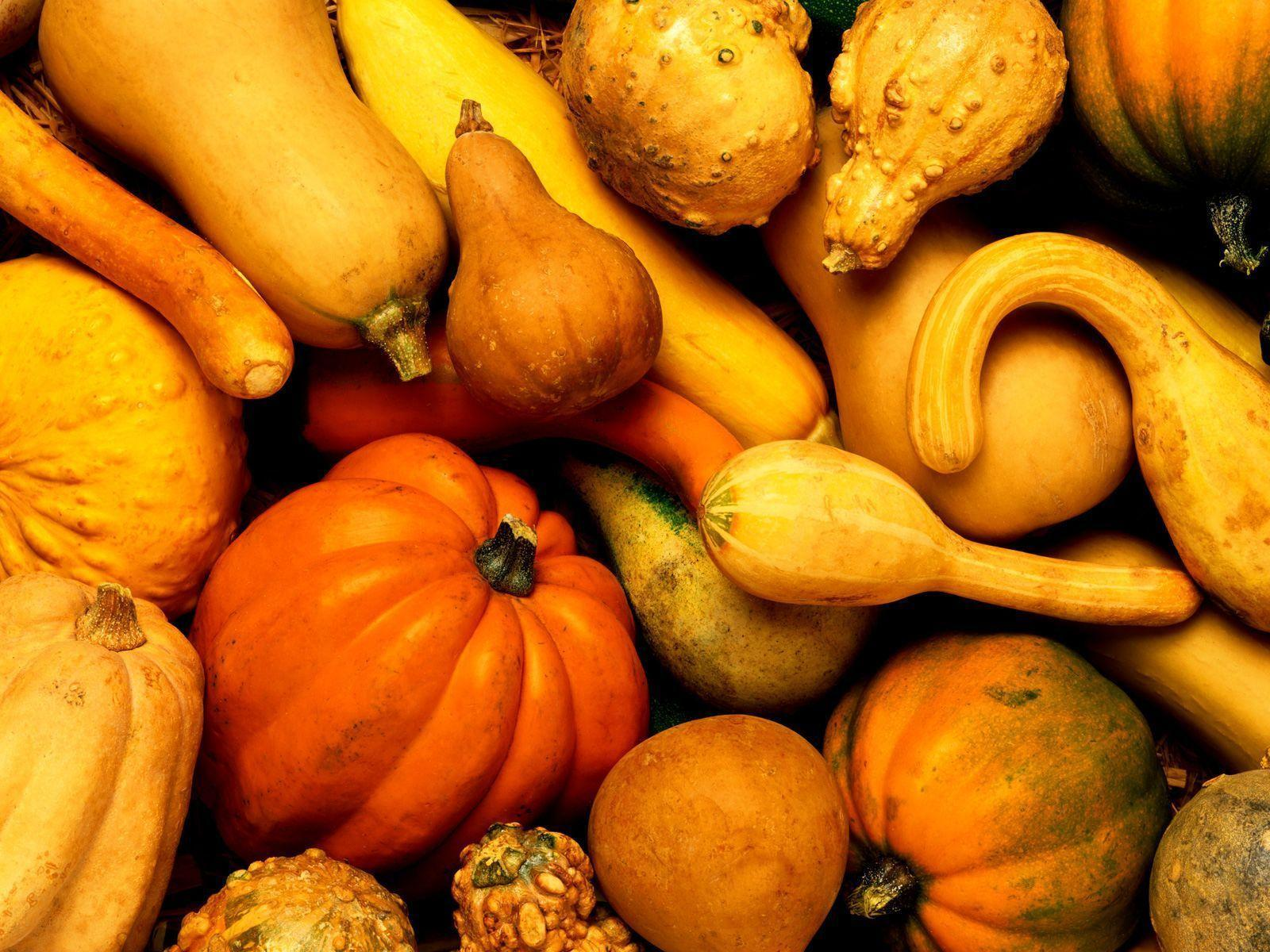 Fall Harvest Wallpaper Images Fall Harvest Wallpapers Wallpaper Cave