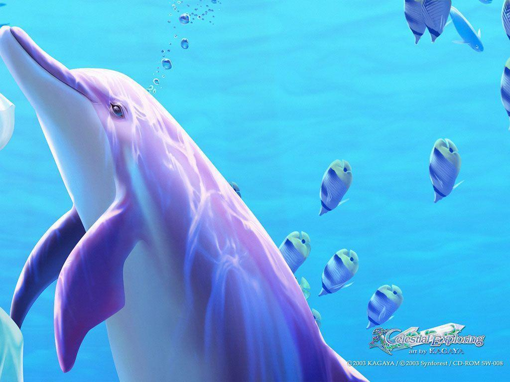 Wallpaper Dolphin 3d Cute Dolphin Wallpapers Wallpaper Cave