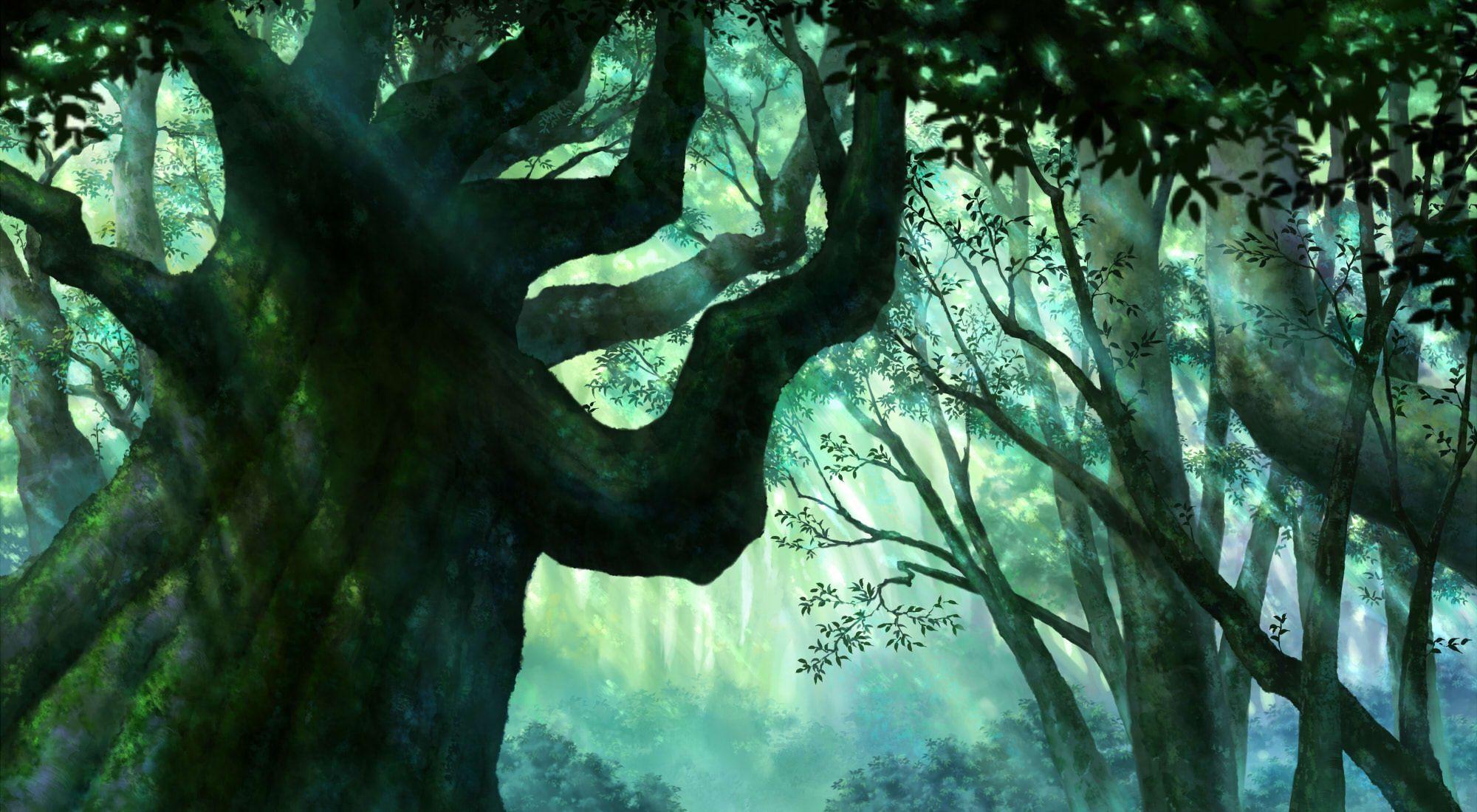 Sai 3d Wallpaper Anime Forest Backgrounds Wallpaper Cave