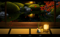 Japanese Garden Wallpaper Night