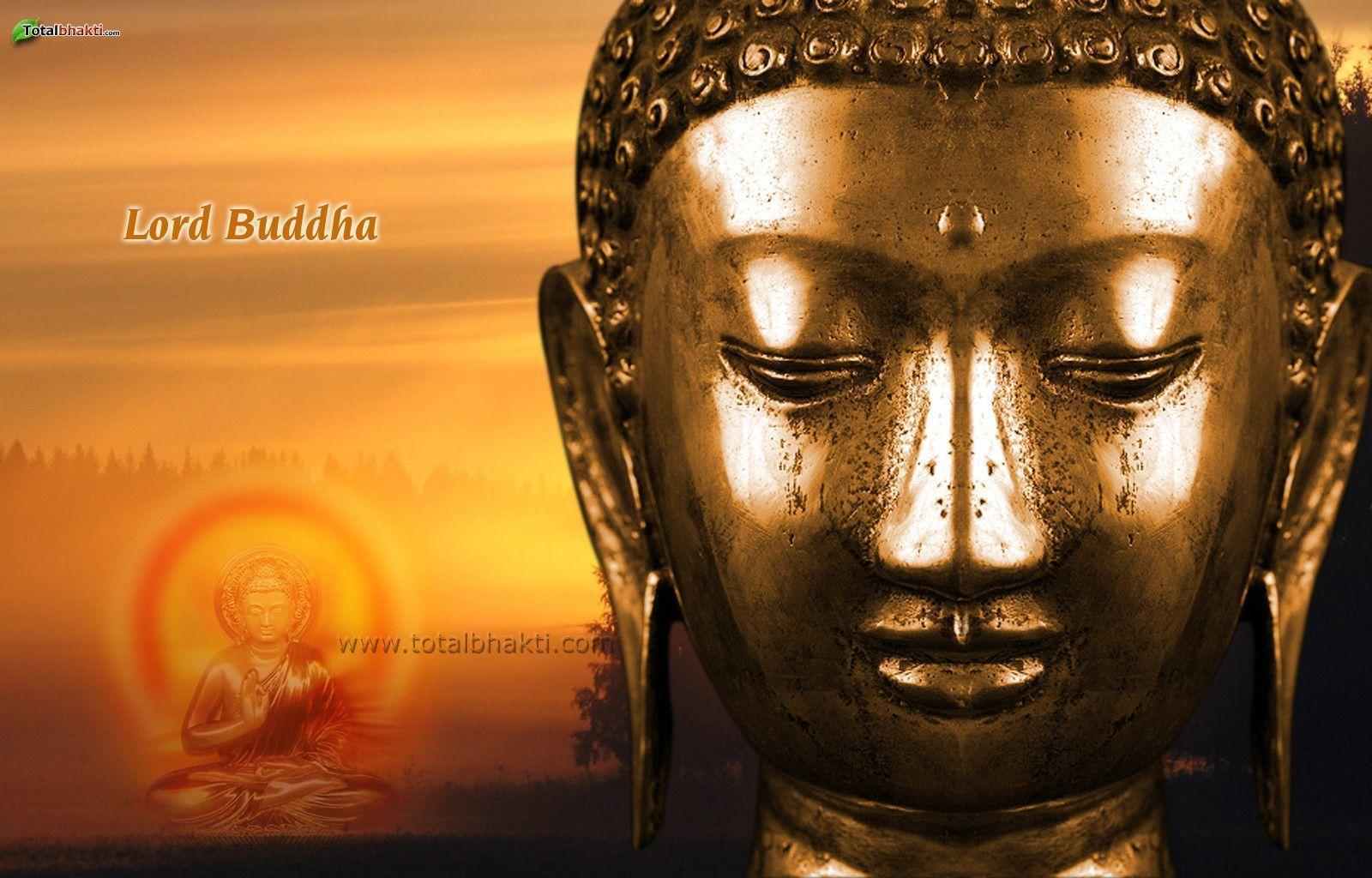 Create Quotes Wallpaper Online Wallpapers Buddha Wallpaper Cave
