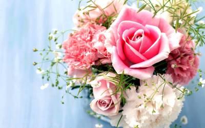 Wallpapers Pink Roses - Wallpaper Cave