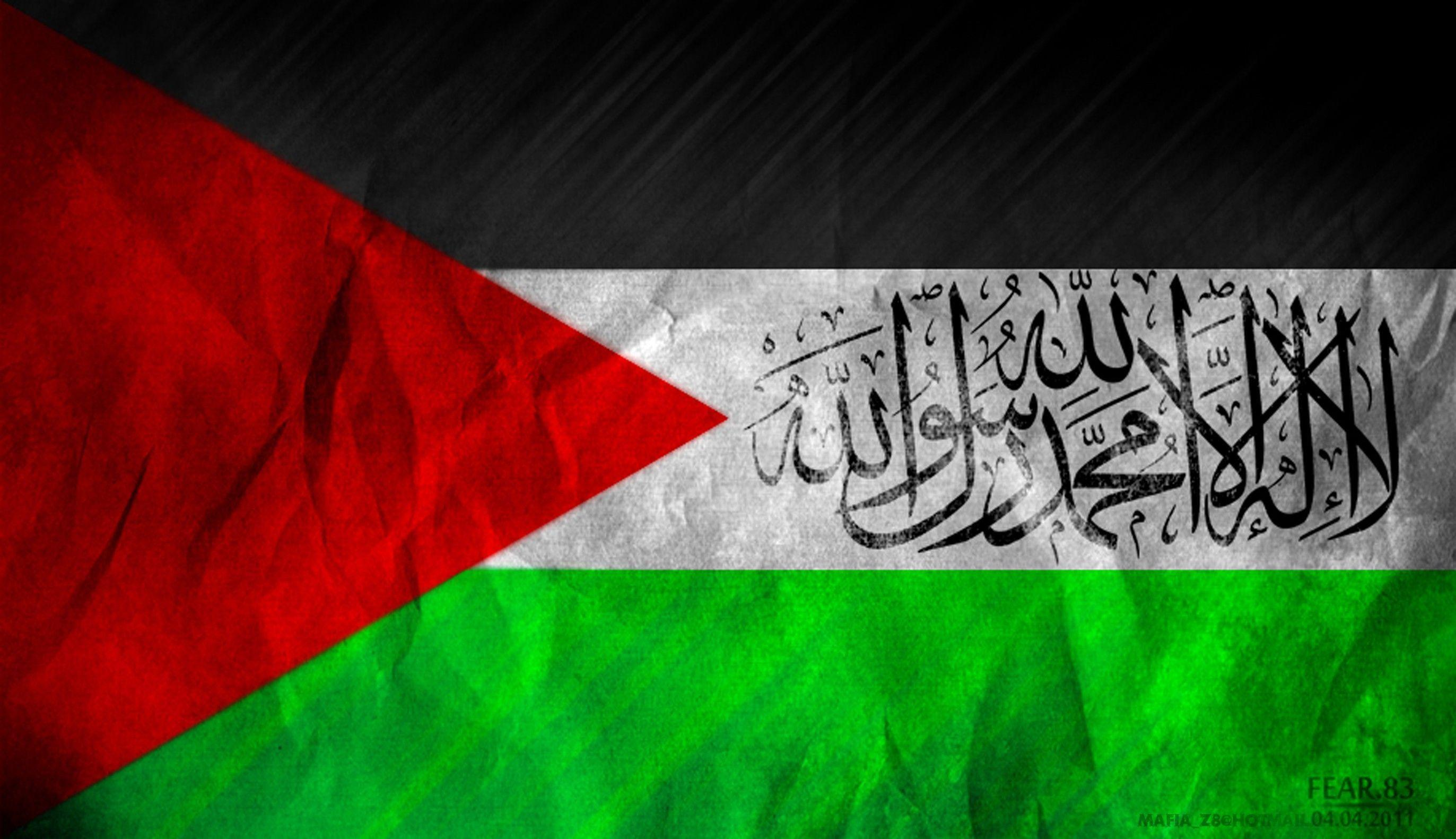 Israel Flag Wallpaper Hd Palestine Wallpapers Wallpaper Cave