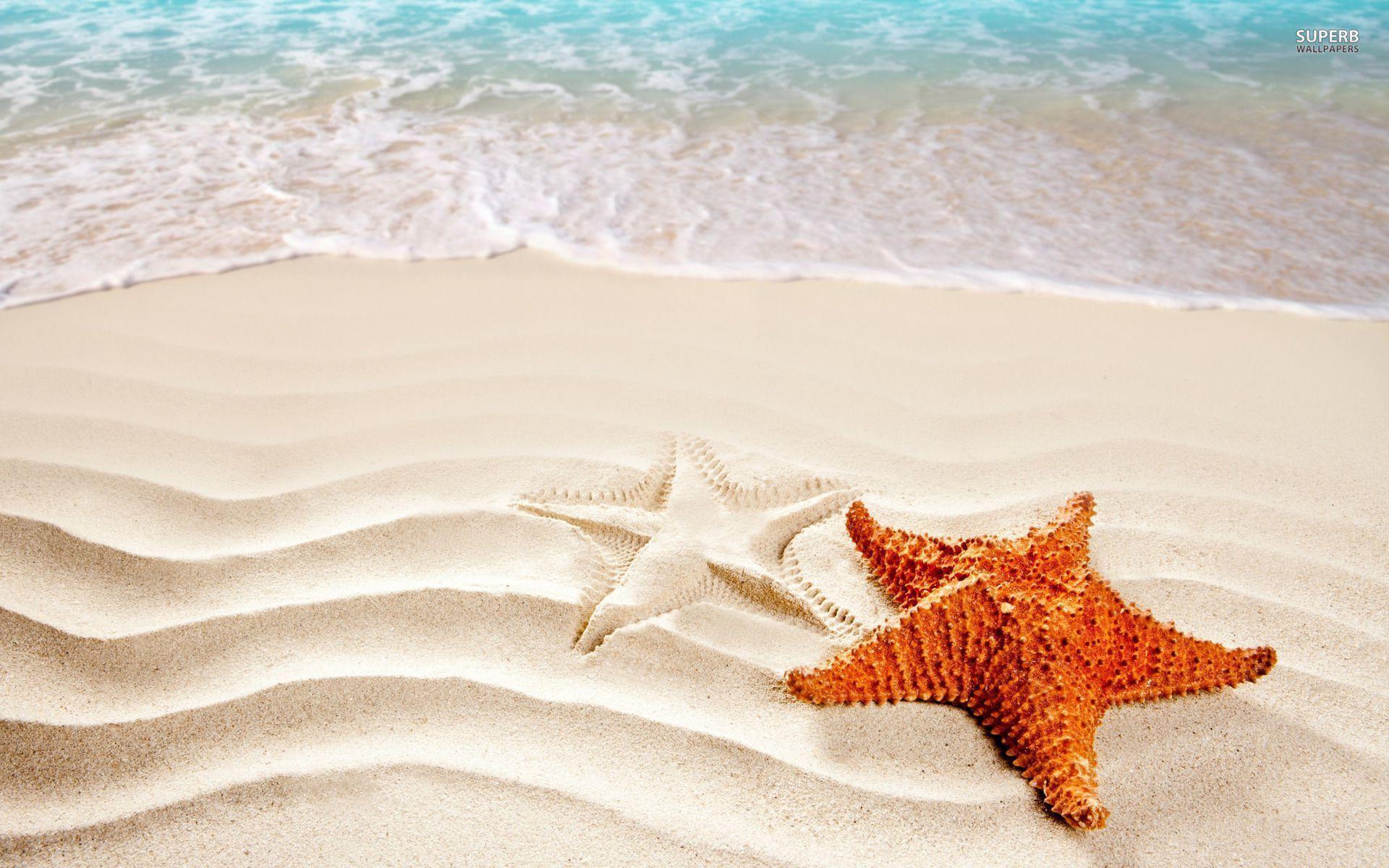 Mermaid Wallpaper Iphone Starfish Backgrounds Wallpaper Cave