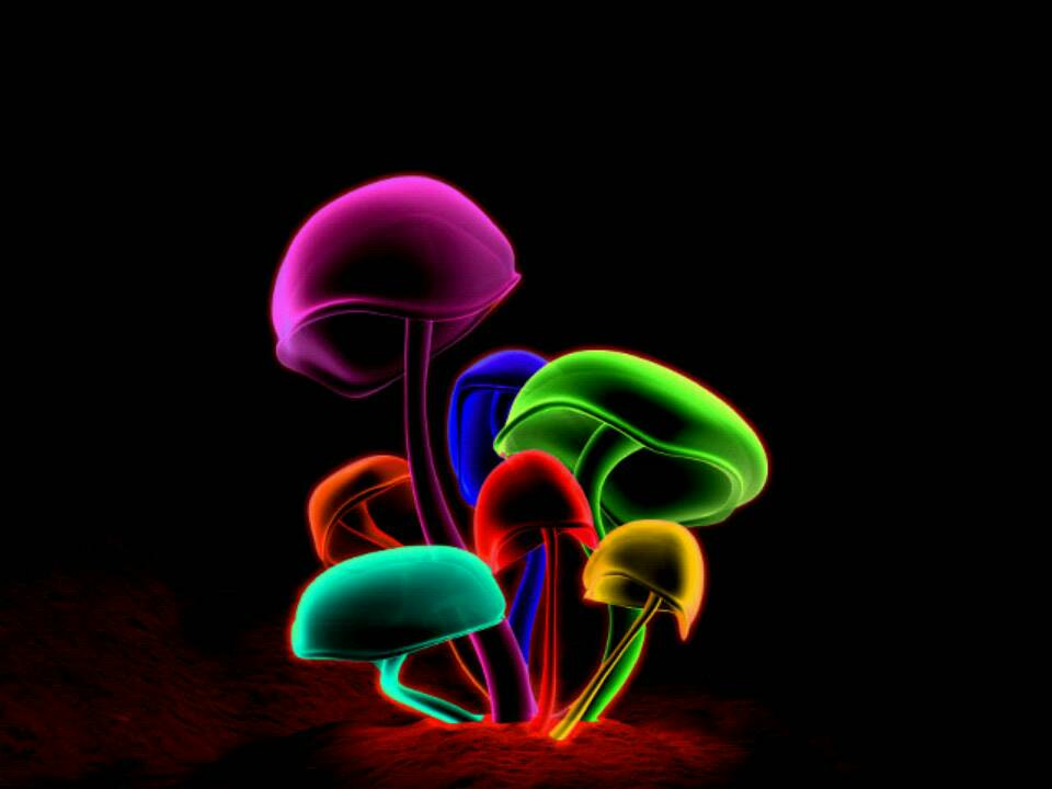 Digital Blasphemy 3d Wallpaper Free Shroom Wallpapers Wallpaper Cave