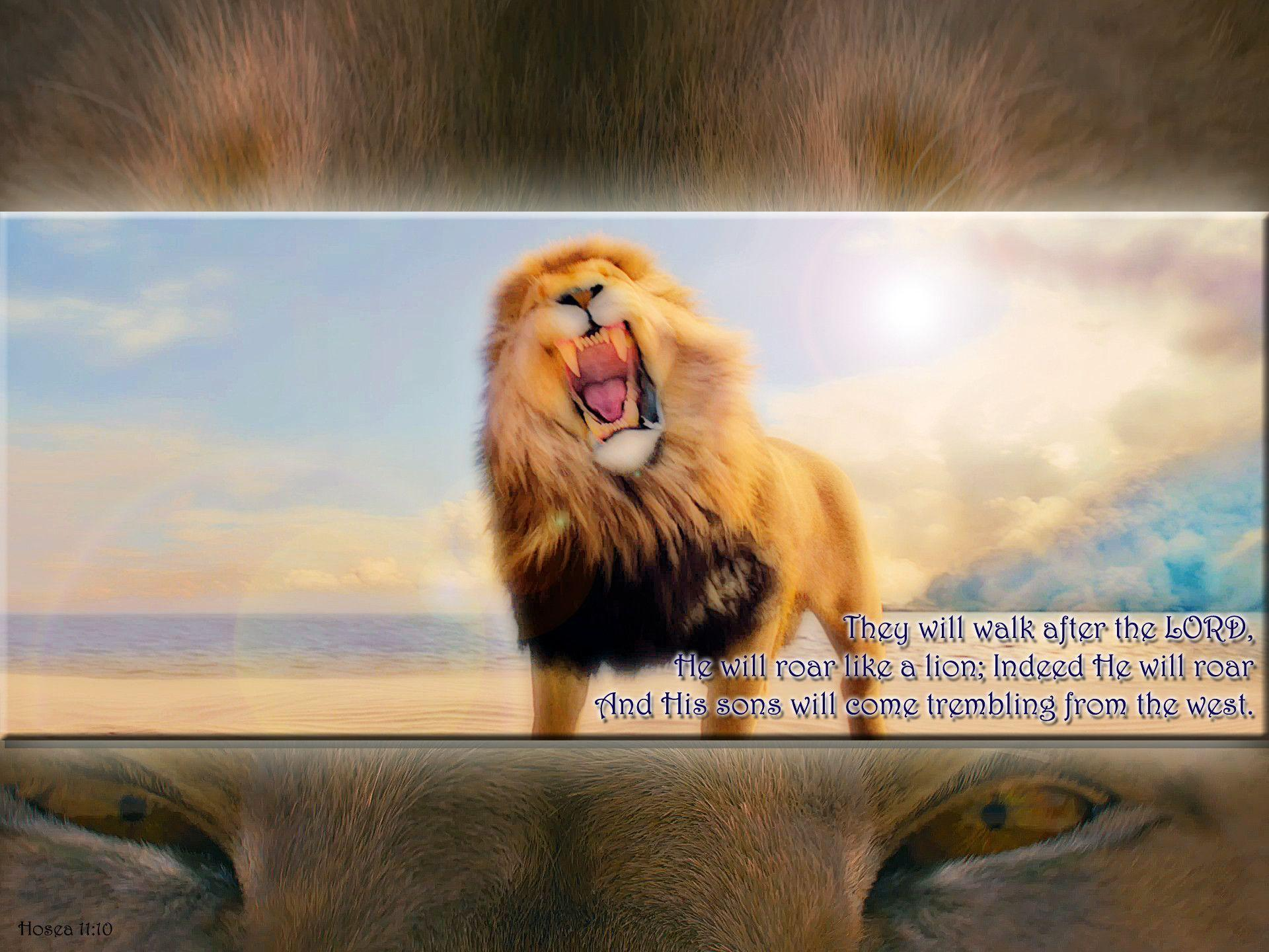 Lion Quotes Wallpaper Narnia Aslan Wallpapers Wallpaper Cave