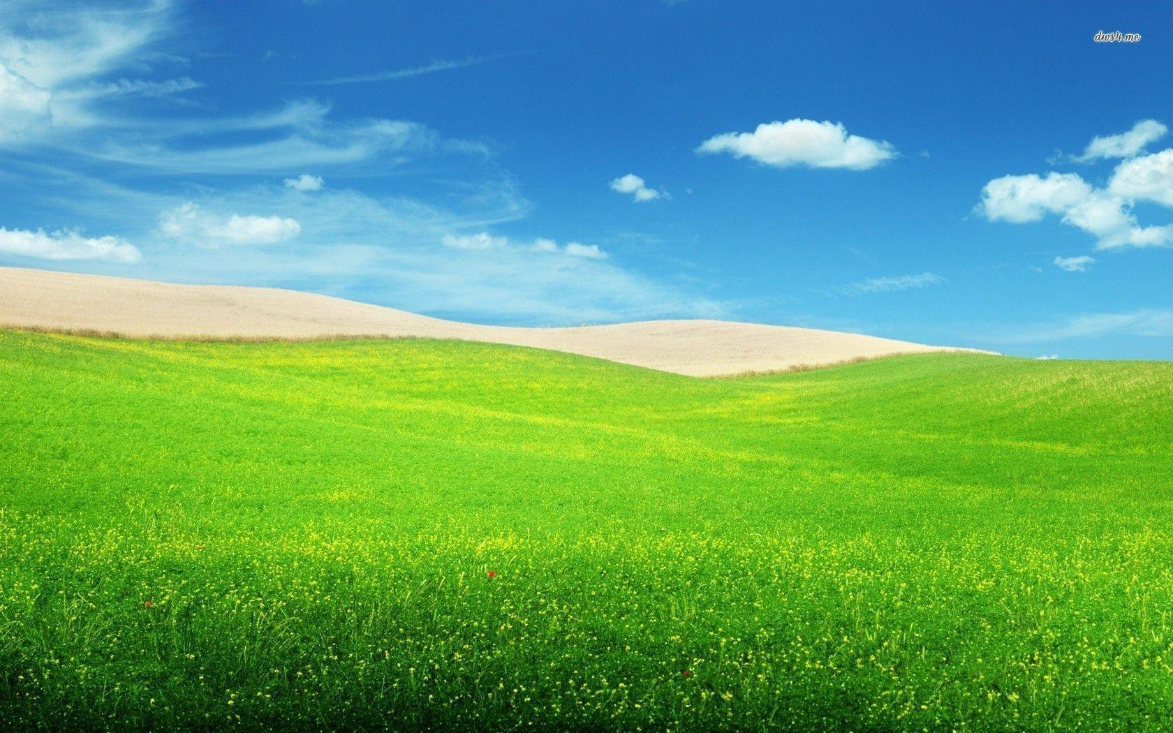 Hd Wallpaper App For Android Green Hills Wallpapers Wallpaper Cave