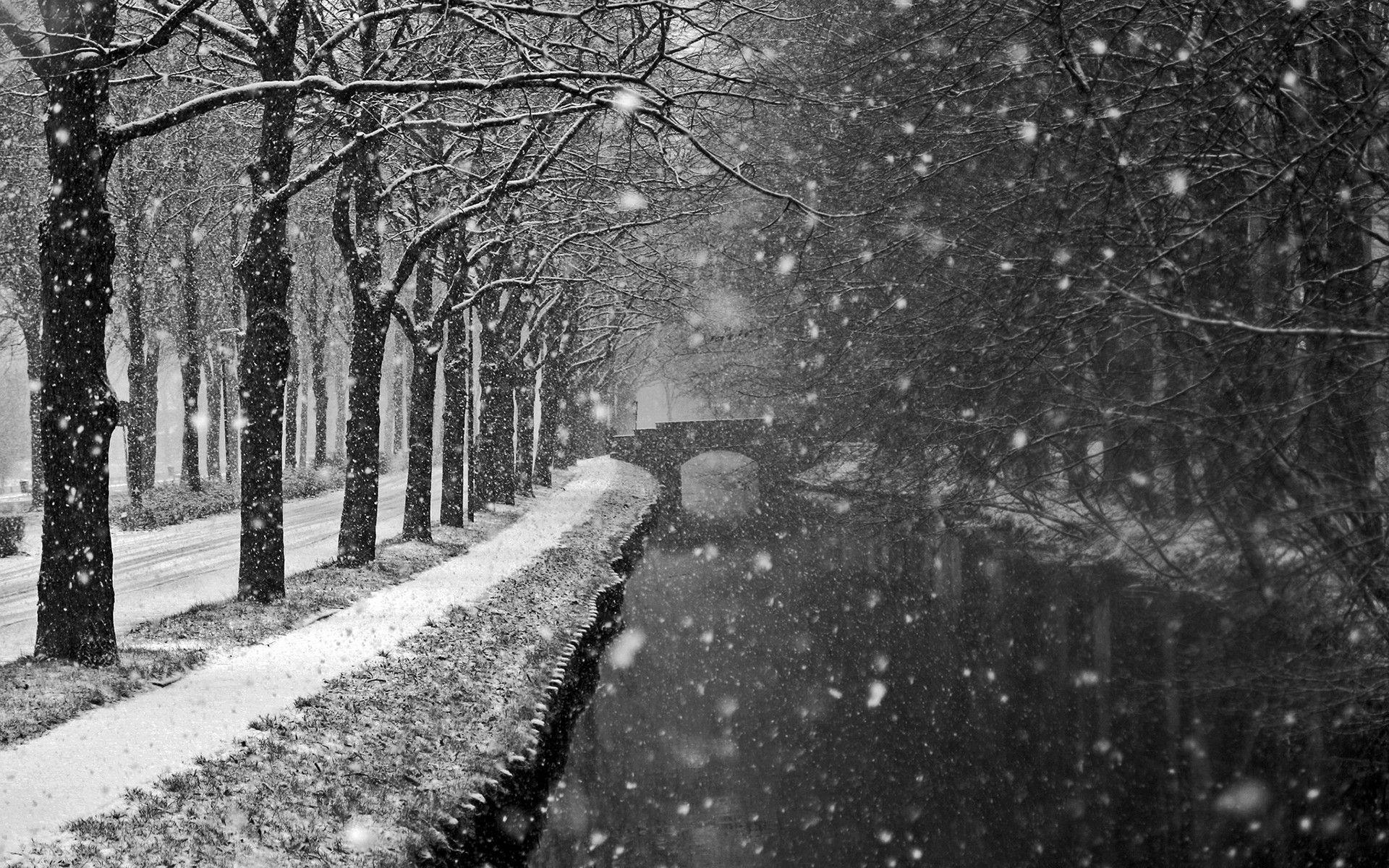 Falling Snow Live Wallpaper For Pc Snow Storm Wallpapers Wallpaper Cave