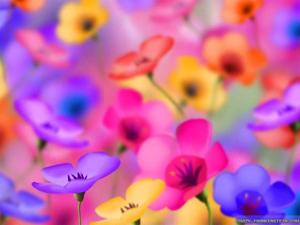 Pretty Wallpapers Rose Quotes Colorful Flower Wallpapers Wallpaper Cave