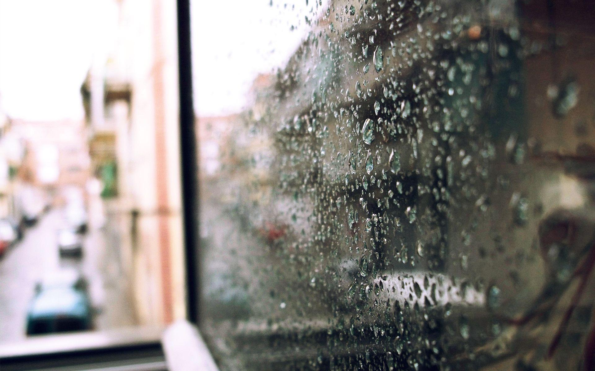 Fall Cartoon Wallpaper Rain Window Wallpapers Wallpaper Cave