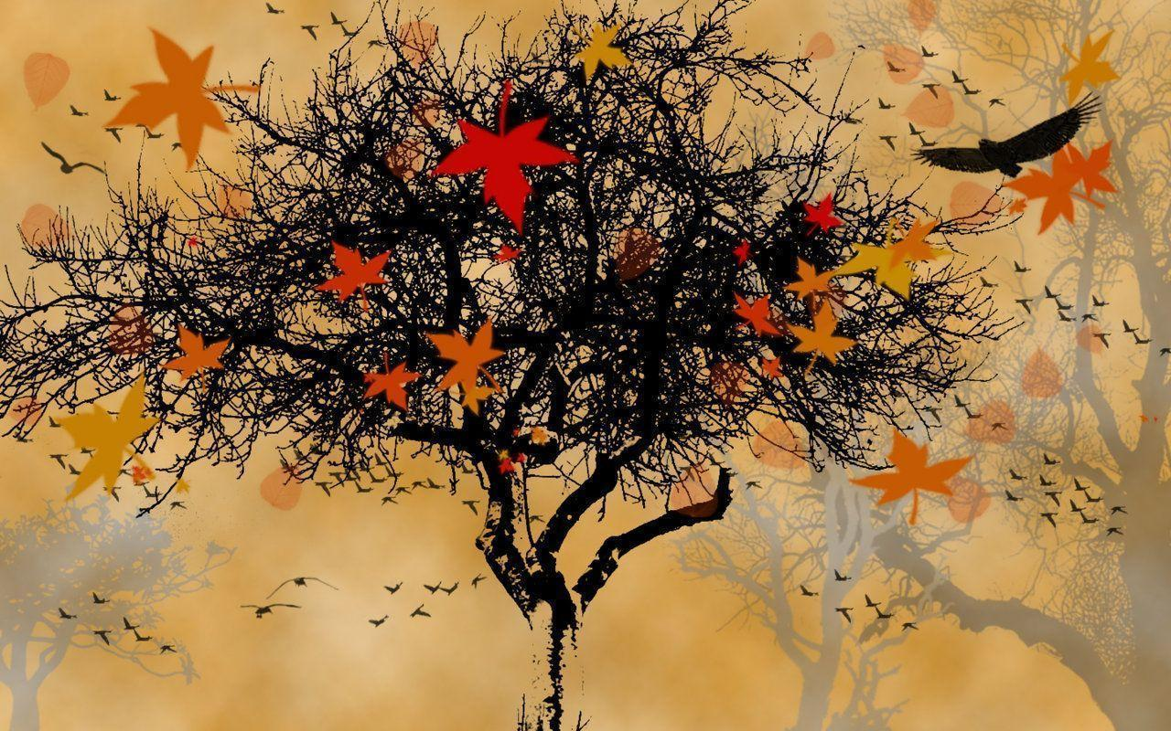 Fall Foliage Wallpaper Widescreen Autumn Screen Wallpapers Wallpaper Cave