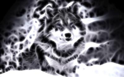 Cool Backgrounds Of Animals - Wallpaper Cave