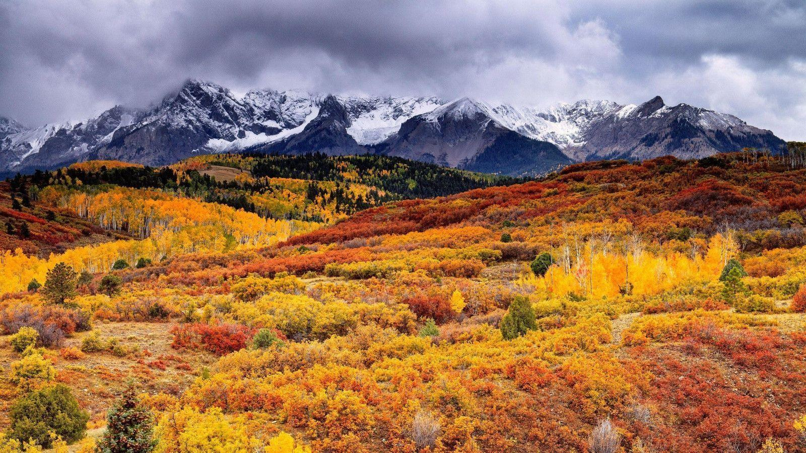Wallpaper For Fall And Autumn Nature Wallpapers 1600x900 Wallpaper Cave