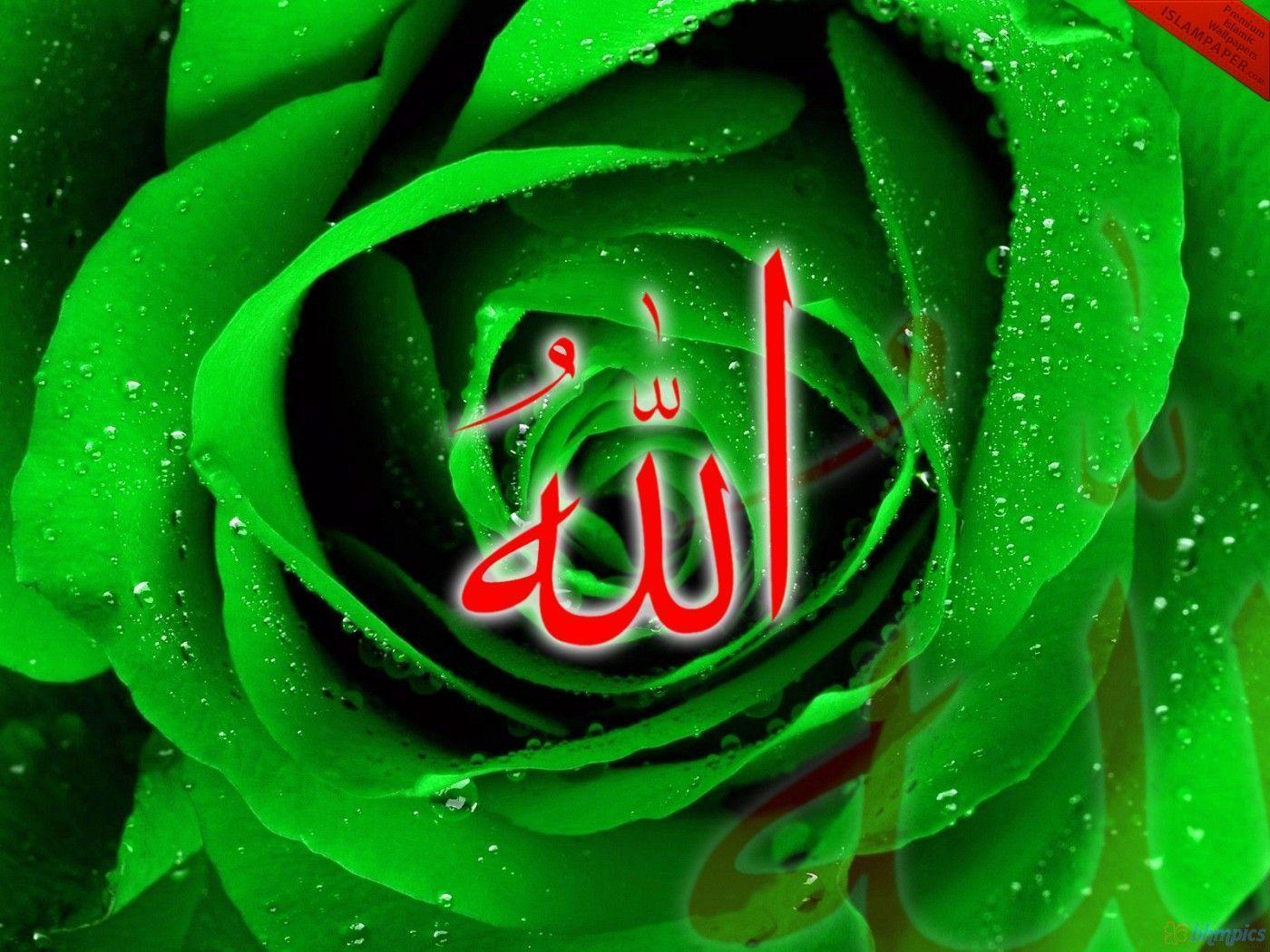 Allah Muhammad Wallpaper Animation Download I Love Allah And