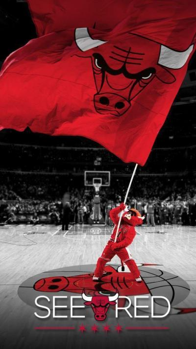 Chicago Bulls Wallpapers HD 2016 - Wallpaper Cave