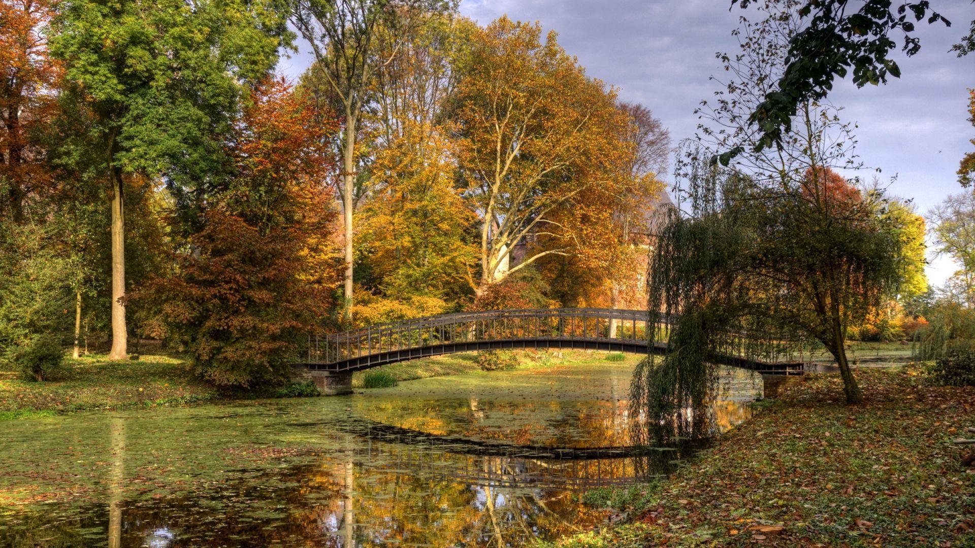 Fall Hd Wallpapers 1080p Widescreen Netherlands Wallpapers Wallpaper Cave