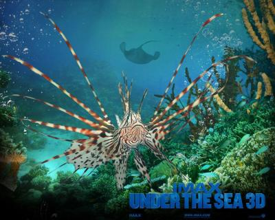 Under The Sea Wallpapers - Wallpaper Cave