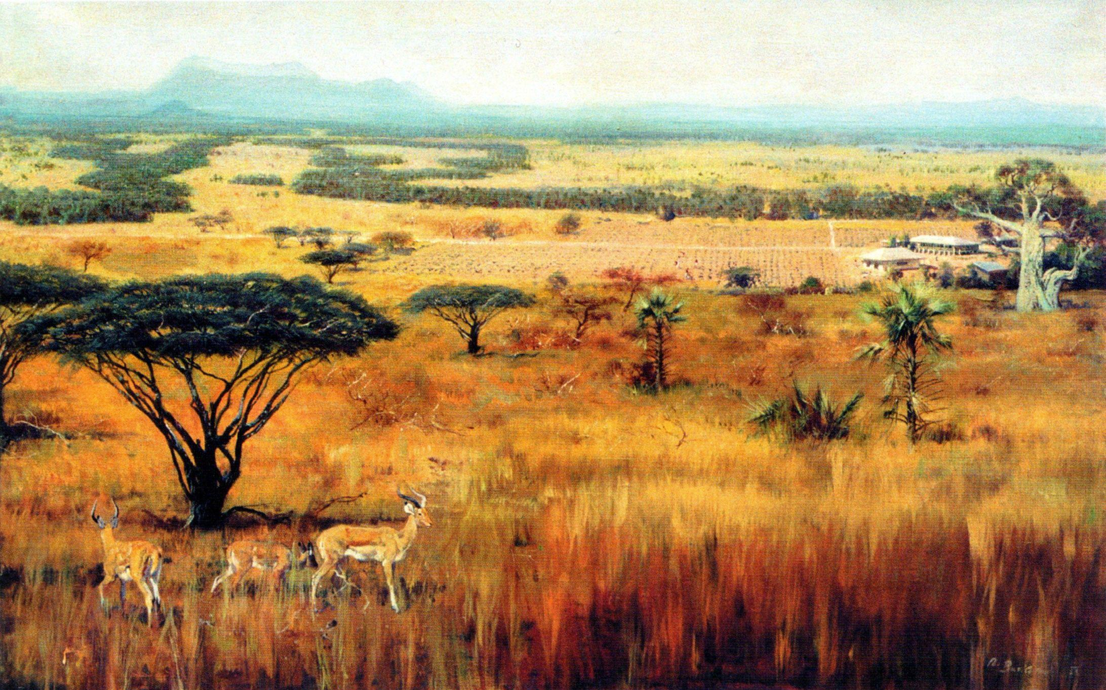 Savana Hd African Savanna Wallpapers Wallpaper Cave