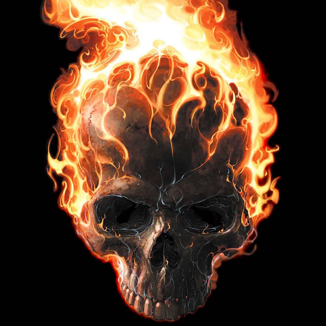 Ebay 3d Wallpaper Photo Cool Flaming Skull Wallpapers Wallpaper Cave