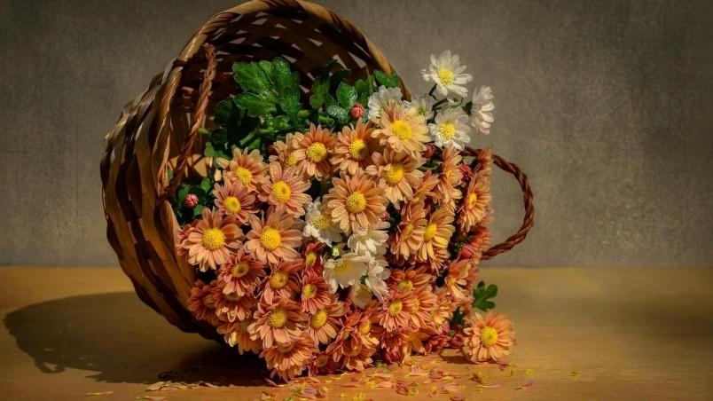 3d Wallpaper 320 480 Flowers Basket Hd Wallpaper Wallpaperfx