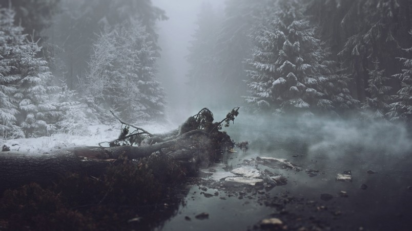 Forest Animated Wallpaper Winter Magic Hd Wallpaper Wallpaperfx