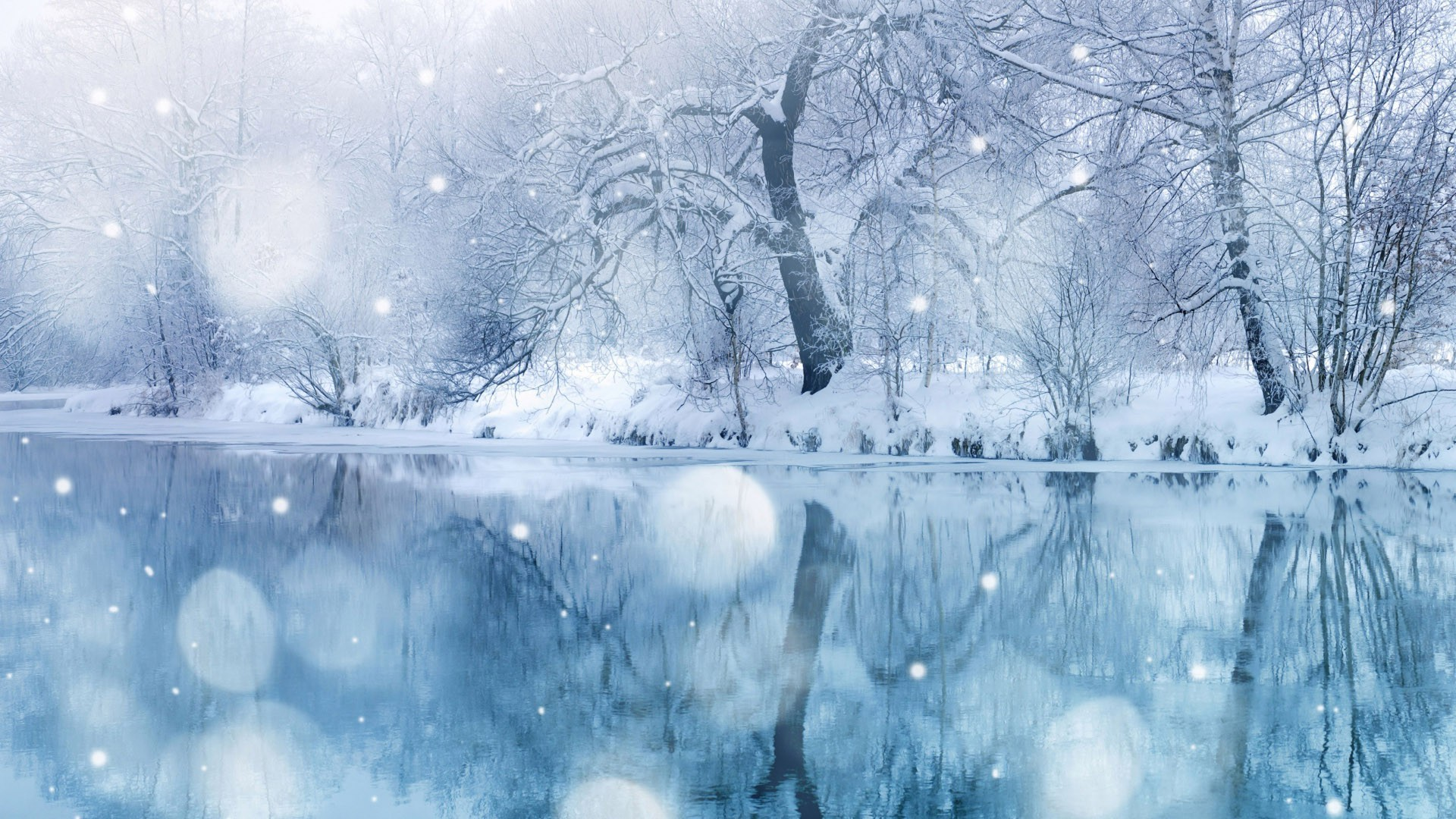 Falling Snow Live Wallpaper For Iphone Snow Falling Wallpapers