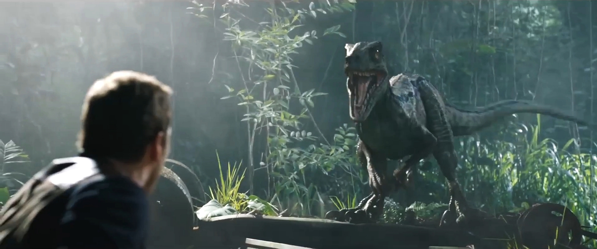 Free Nice Quotes Wallpapers Jurassic World Fallen Kingdom Wallpapers