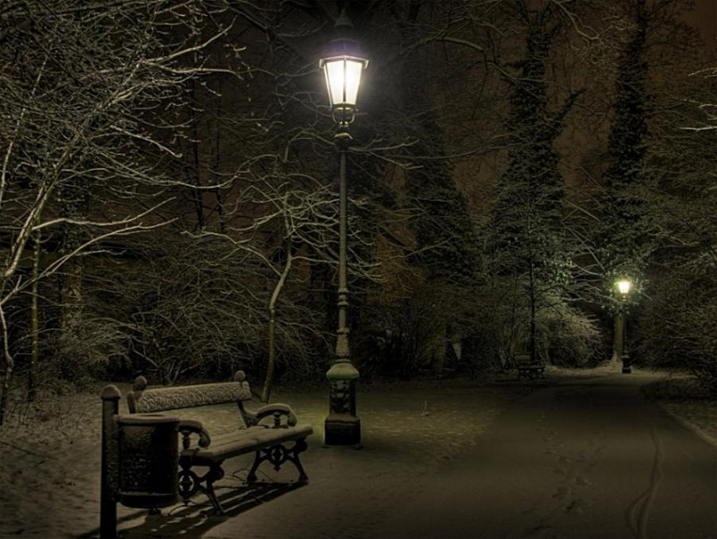 4k Central Park In The Fall Wallpaper Cold Night Park Wallpaper Wallpaper Wallpaperlepi