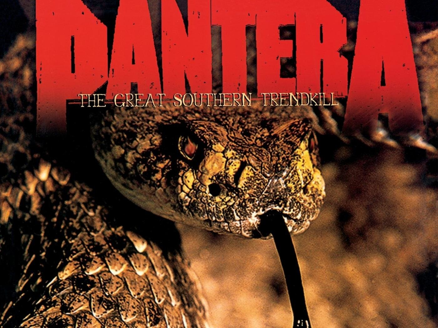 Pantera Wallpaper For Android Best Pantera Wallpaper Id 146138 For High Resolution Hd 1400x1050 Pc