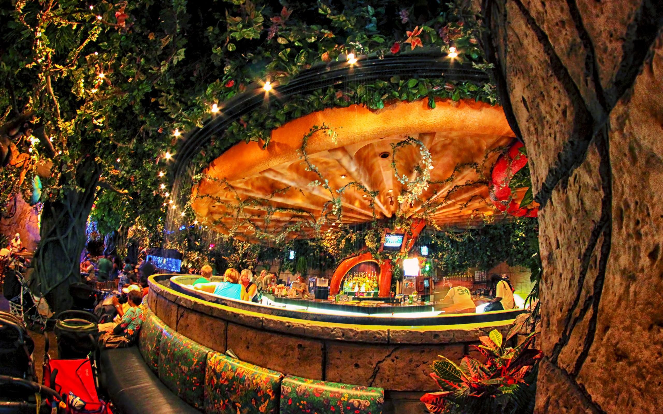 Free Desktop Wallpaper Niagara Falls Unique Bar With A Forest Theme Lifestyle