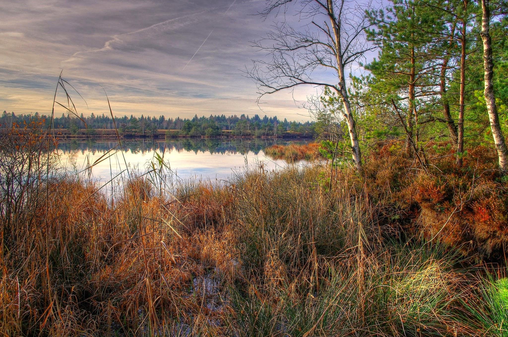 Free Full Screen Fall Wallpaper Beautiful Nature Scene At Lake Nature
