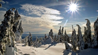Wallpapers-catalogue.com - Winter sun in 1366x768 resolution.