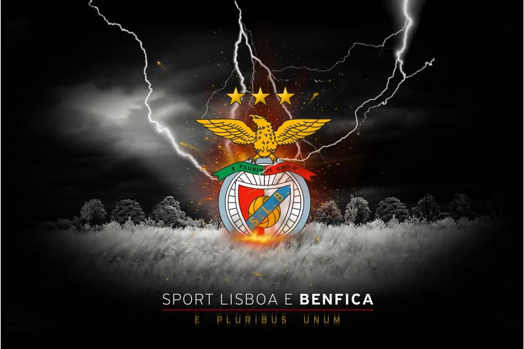 Wallpaper Iphone 3d Touch Benfica Football Wallpaper Backgrounds And Picture