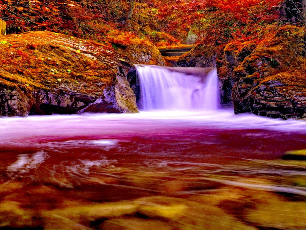 Pc Backgrounds Autumn Forest Falls Nature Waterfall 745340 2560x1600