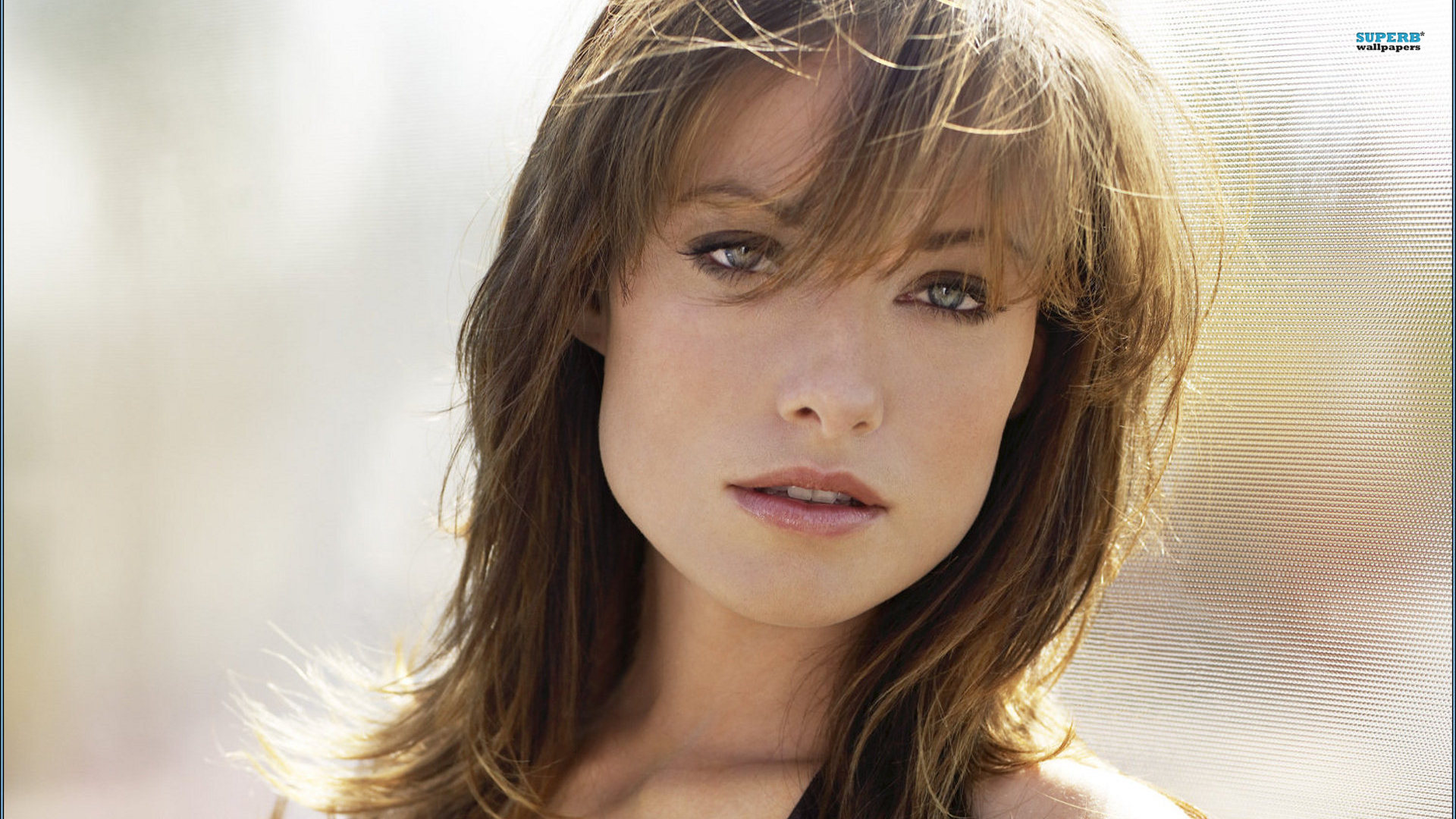 Cute Wallpapers To Say I Love You Olivia Wilde Hd Wallpapers For Desktop Download