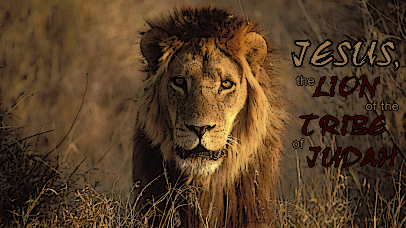 Jesus Wallpaper Hd 3d The Lion Christian Wallpapers