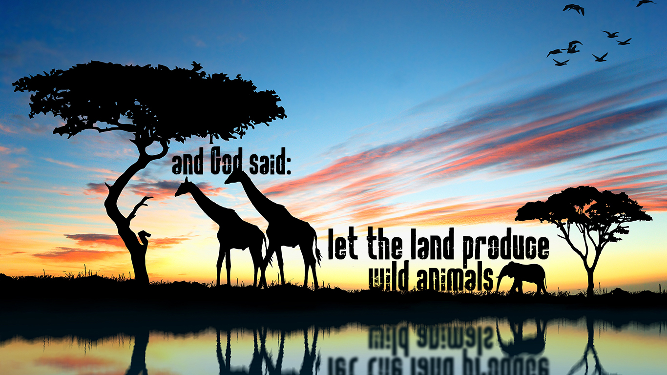 24 Wallpaper Hd Let The Land Produce Christian Wallpapers