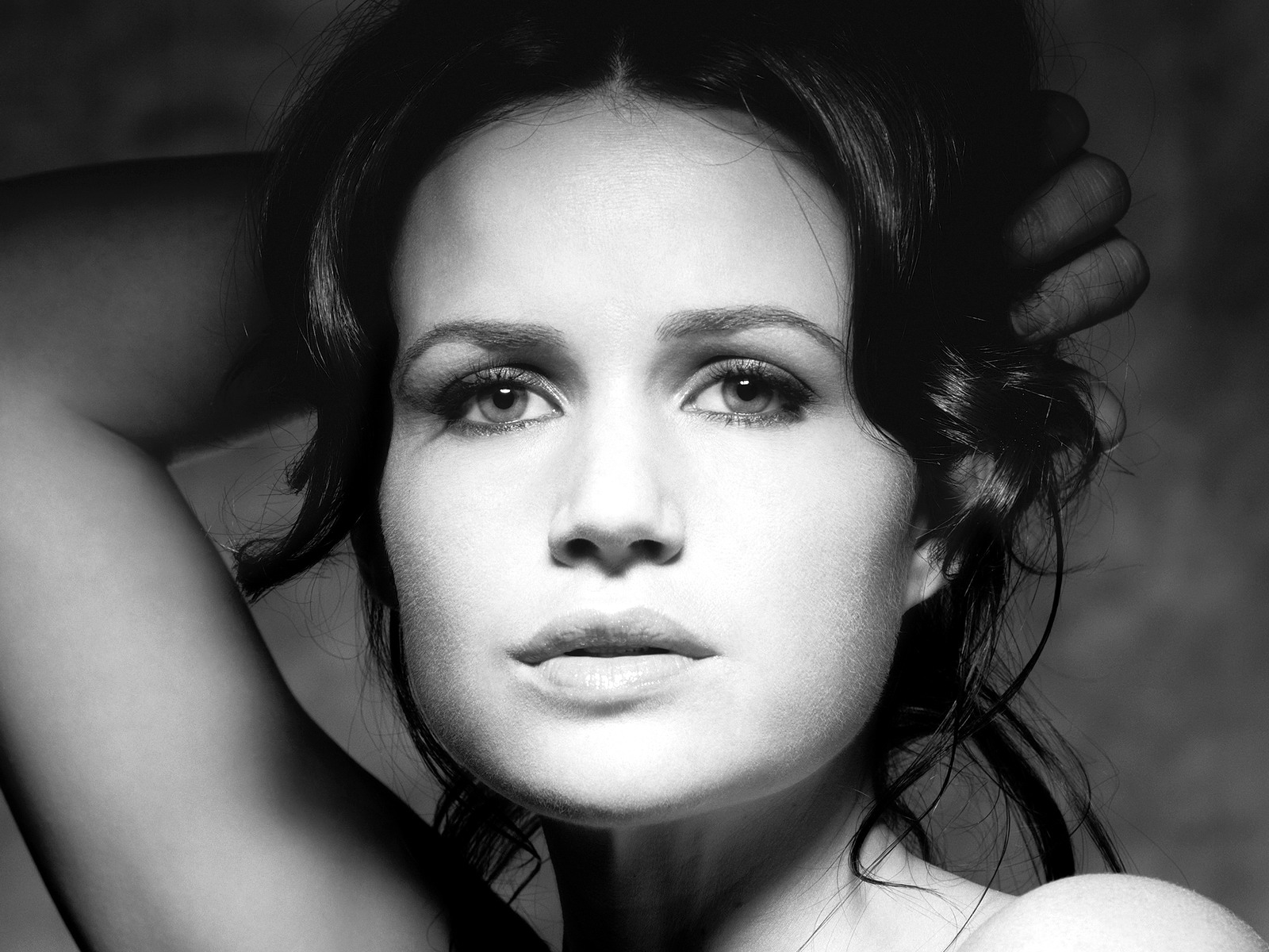 Animated Hd Wallpapers 1080p Free Download Carla Gugino Hd Wallpapers Free Download