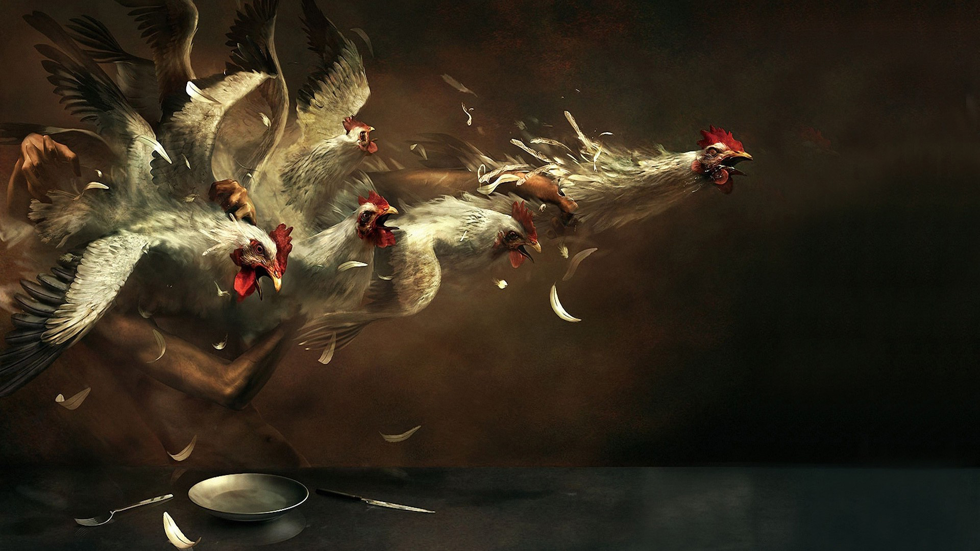 Funny 3d Animals Wallpapers Chicken Hd Wallpapers