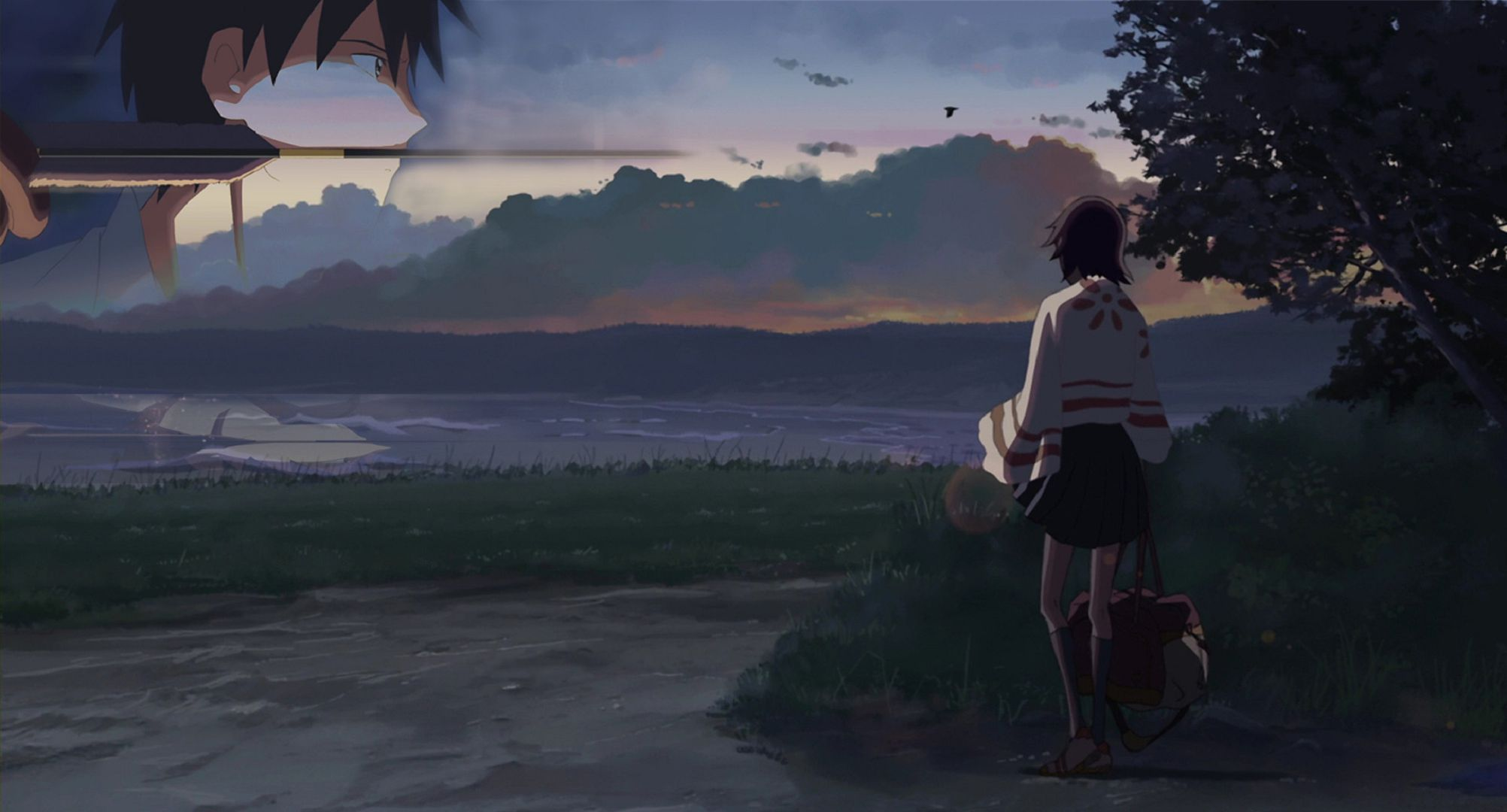 Free Animated Wallpaper Backgrounds 5 Centimeters Per Second Wallpapers Backgrounds