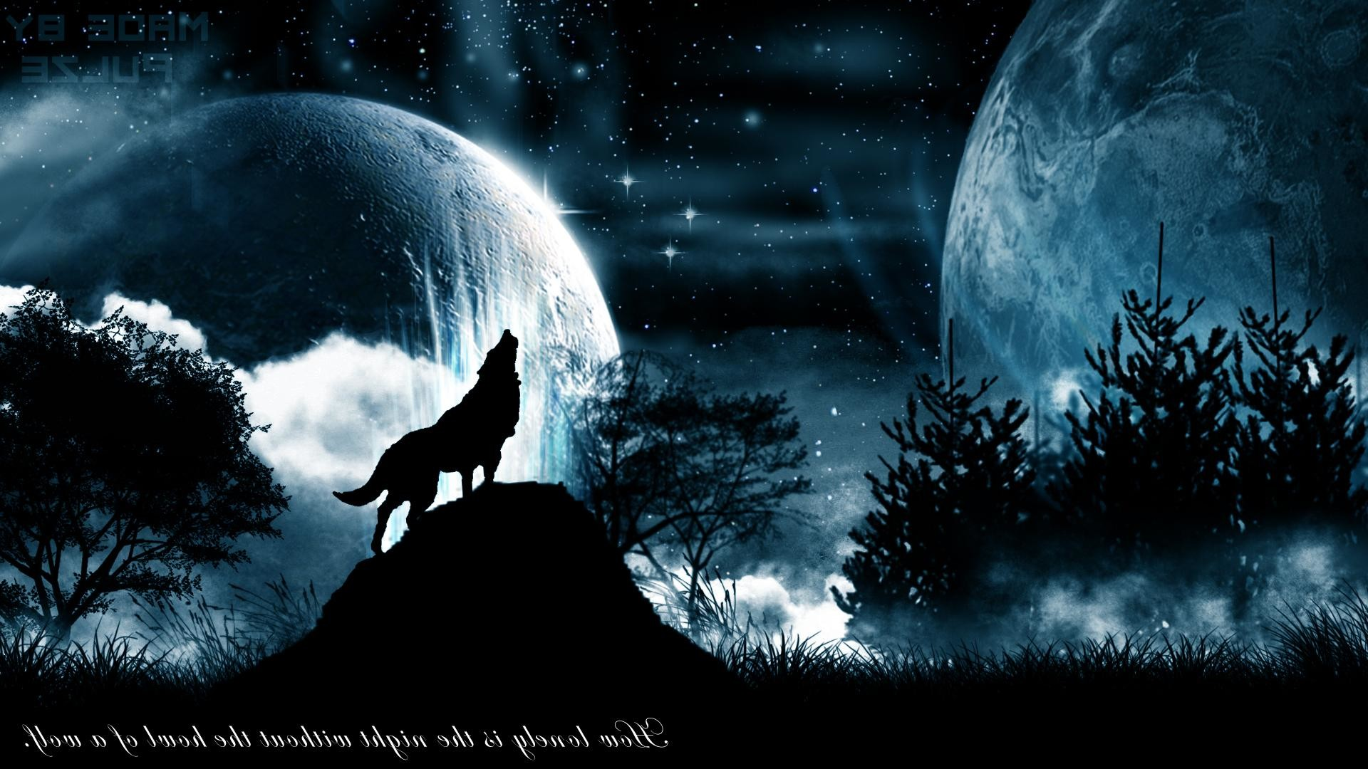 Black Wolf Wallpaper Howling Wolf Wallpaper 64 Pictures