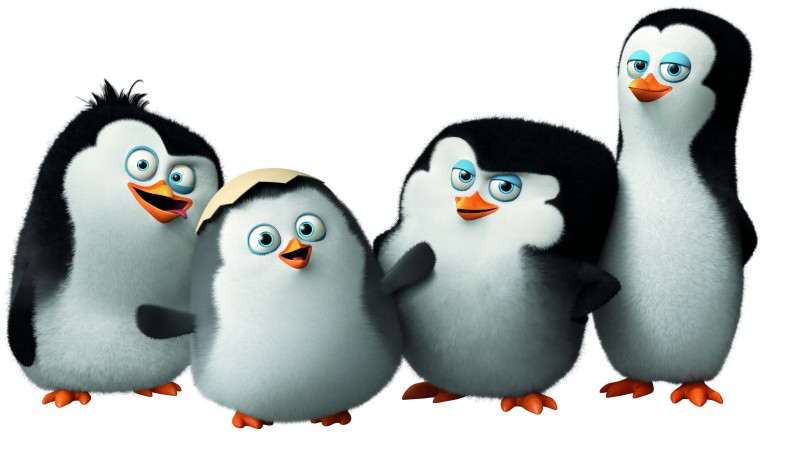 Cute Minions Wallpaper Quotes Wallpaper Penguins Of Madagascar Cute Penguin Cartoon
