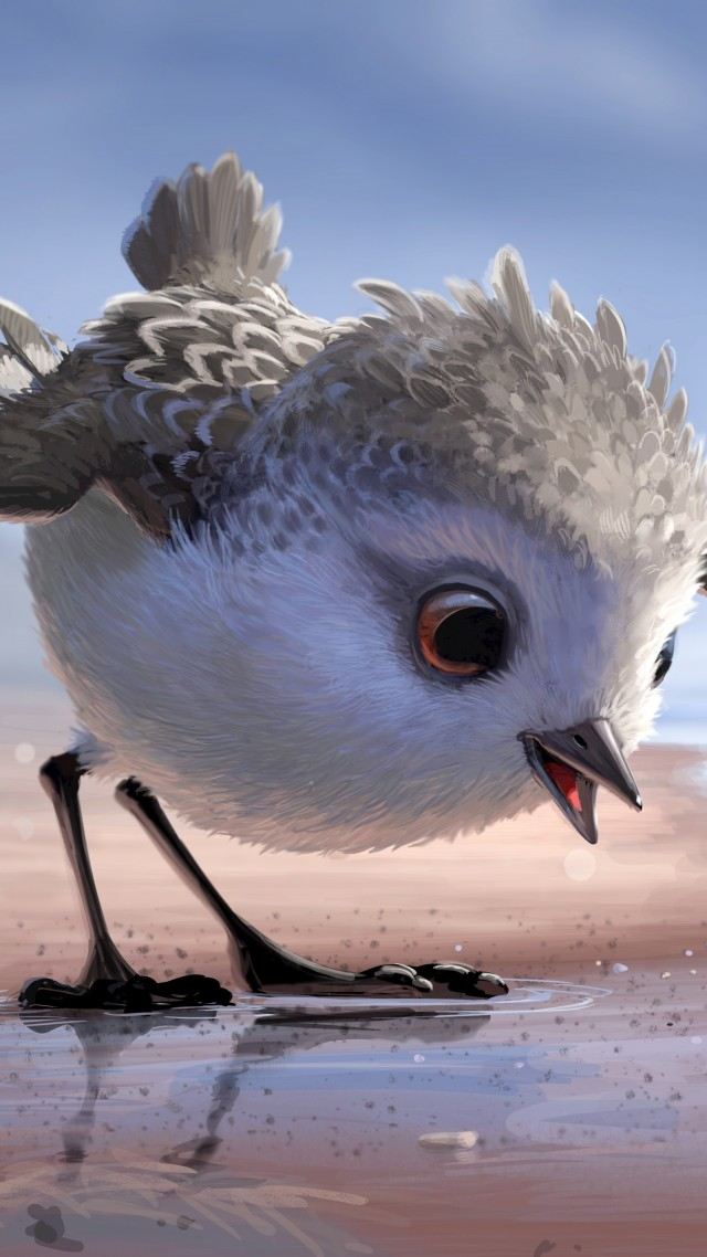 3d Red And Blue Wallpaper Wallpaper Piper Bird Pixar Movies 10361