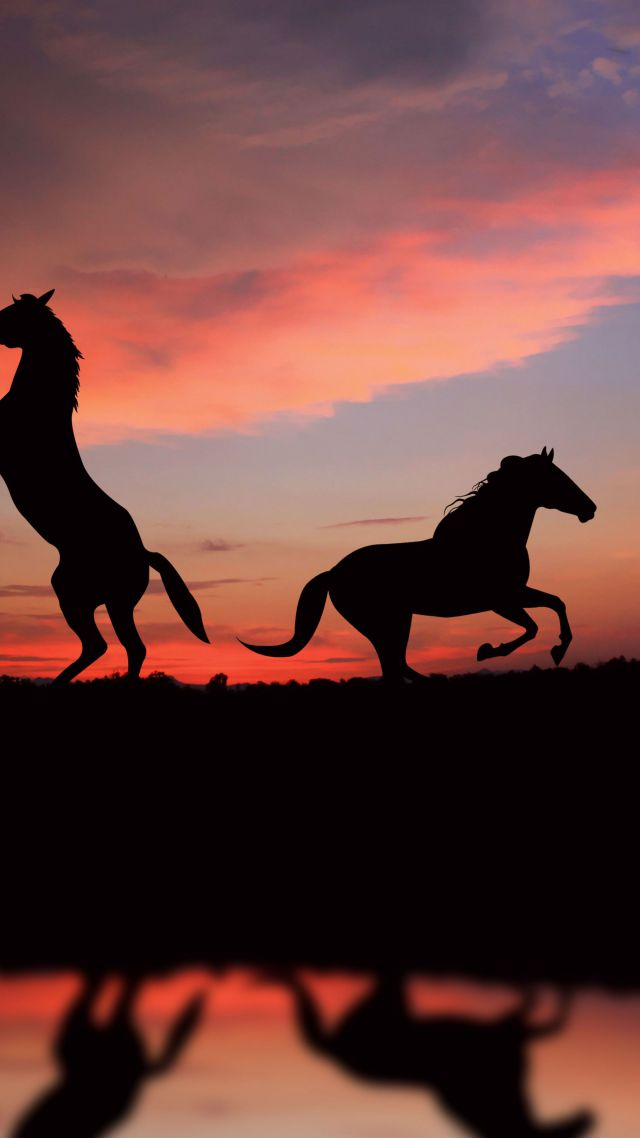 Happiness Quotes Wallpaper Iphone Wallpaper Horse Night Sunset Cute Animals Animals 4877