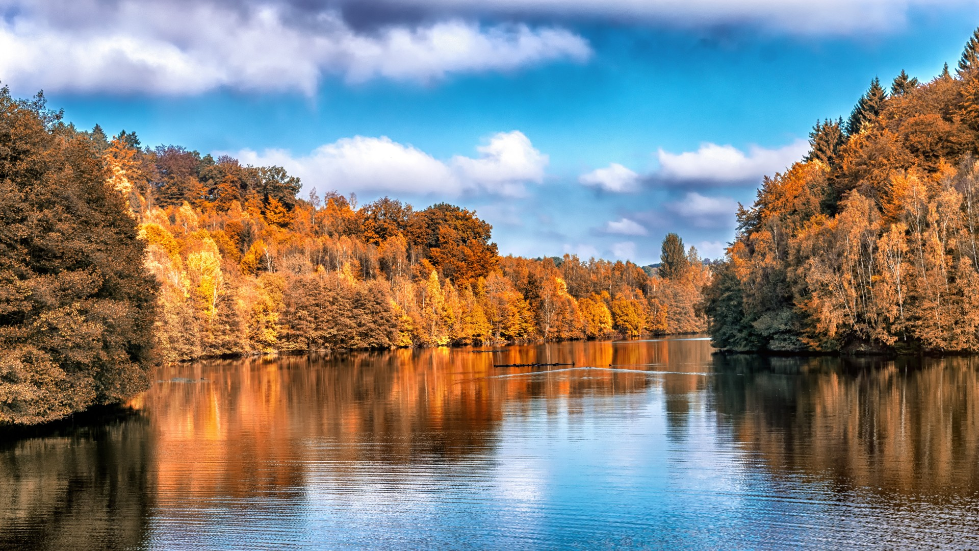 Hd Wallpapers 1080p Widescreen Cars Free Download Wallpaper Autumn Lake Forest 5k Nature 15987