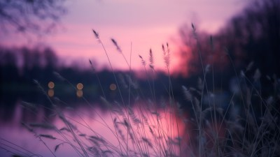 Wallpaper Lake, 4k, HD wallpaper, grass, sunset, purple ...