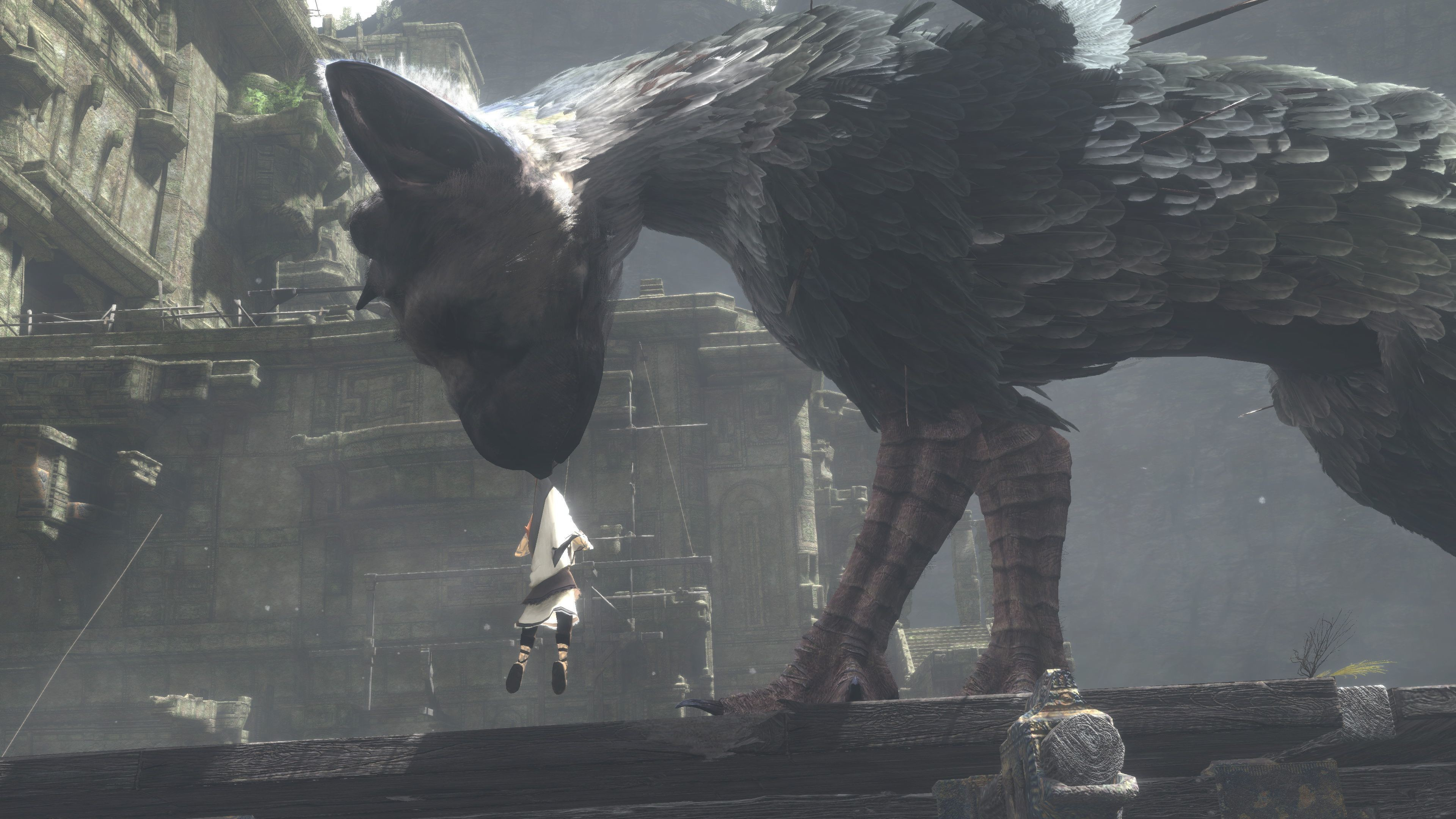 Hd Cool Boy Wallpaper Wallpaper The Last Guardian Trico Best Games 2016 Games