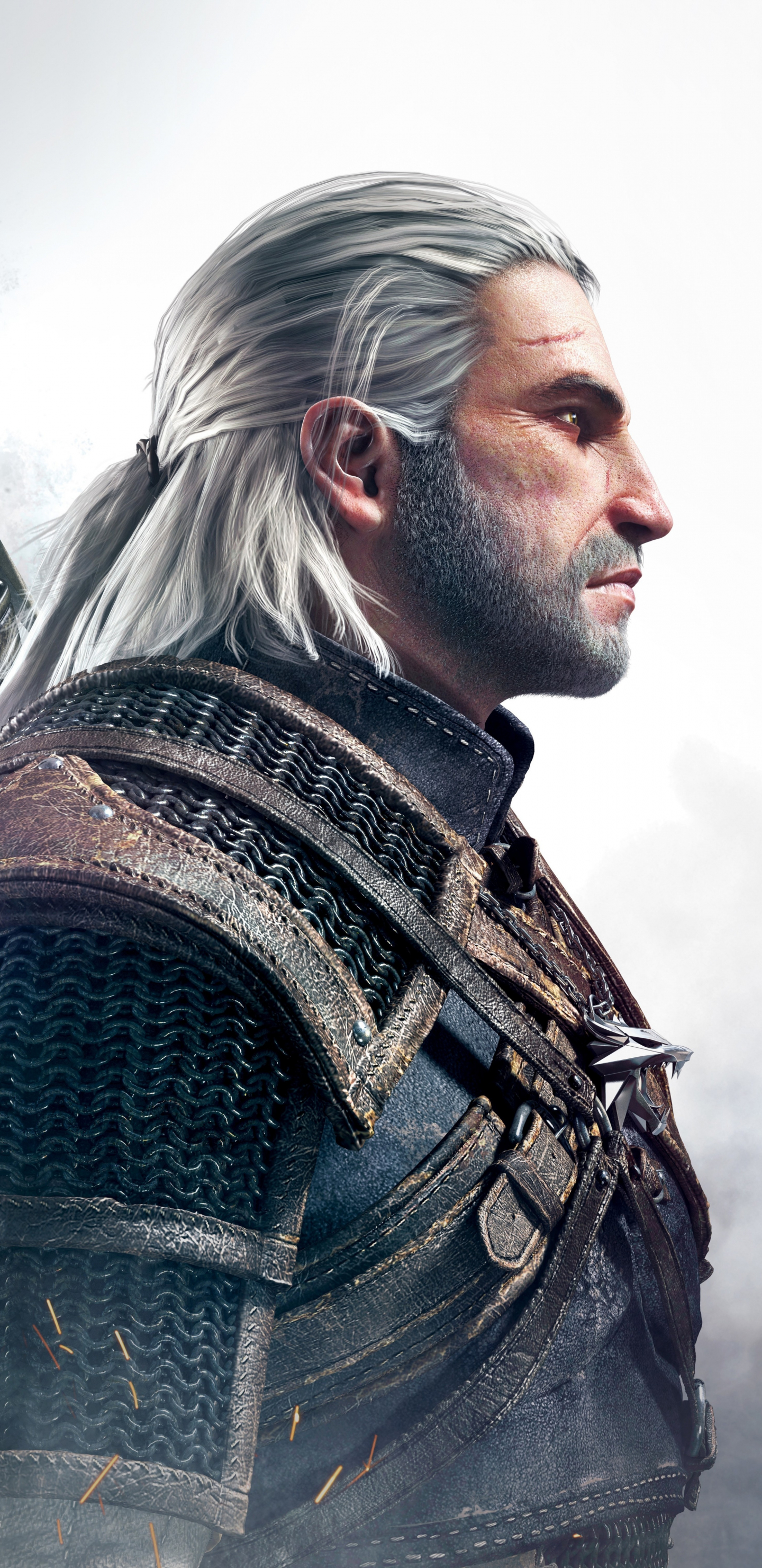 Wallpaper 4k Samsung Galaxy S8 Girls Download 1440x2960 Wallpaper Geralt Of Rivia The Witcher