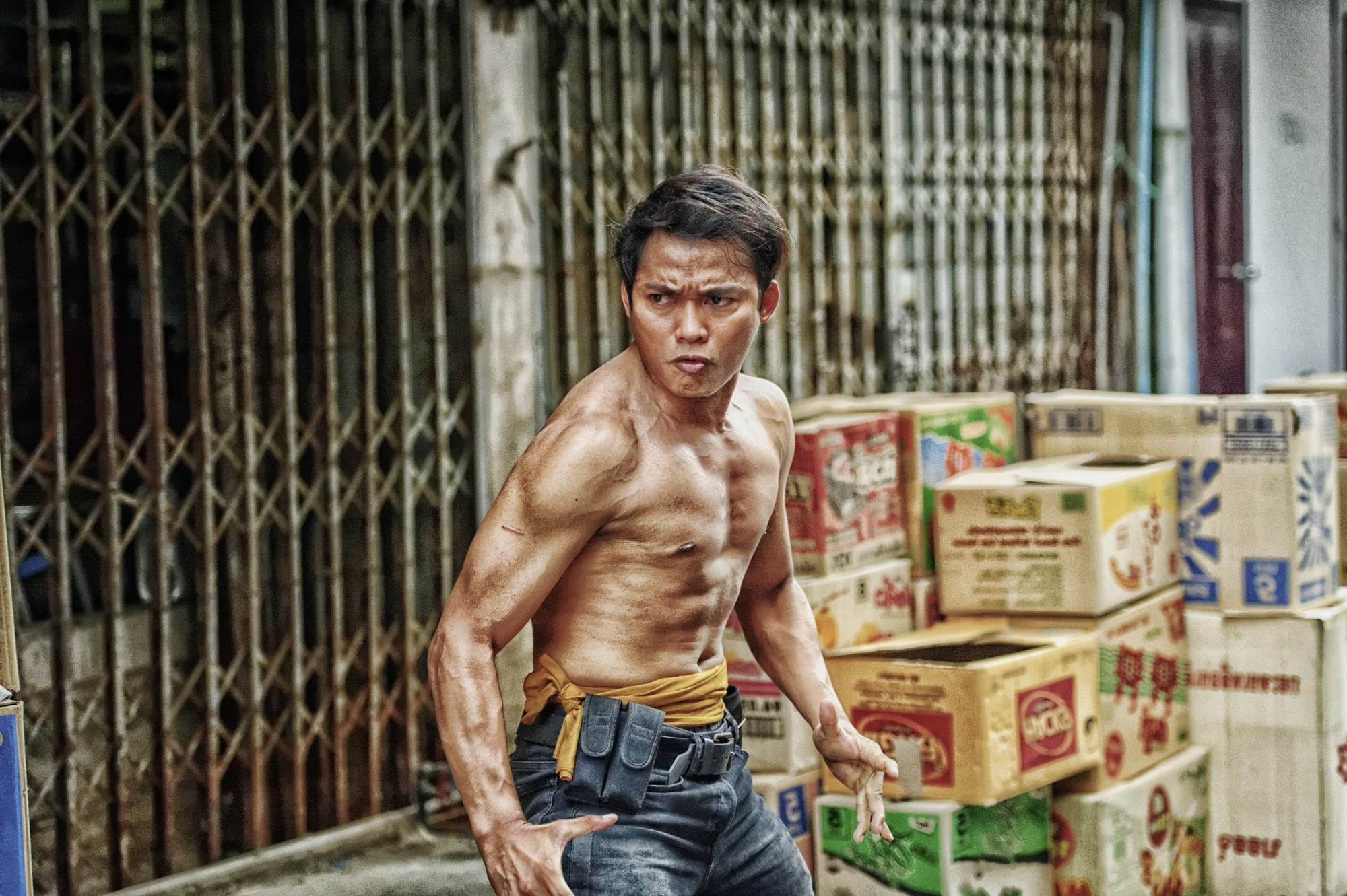 Tiger Iphone 6 Wallpaper 17 Tony Jaa Wallpapers Hd Free Download