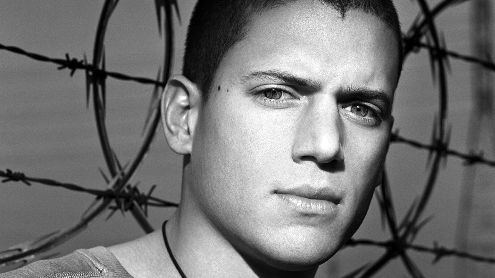 Car Wallpaper Free Download For Android Wentworth Miller Hd Wallpapers Free Download